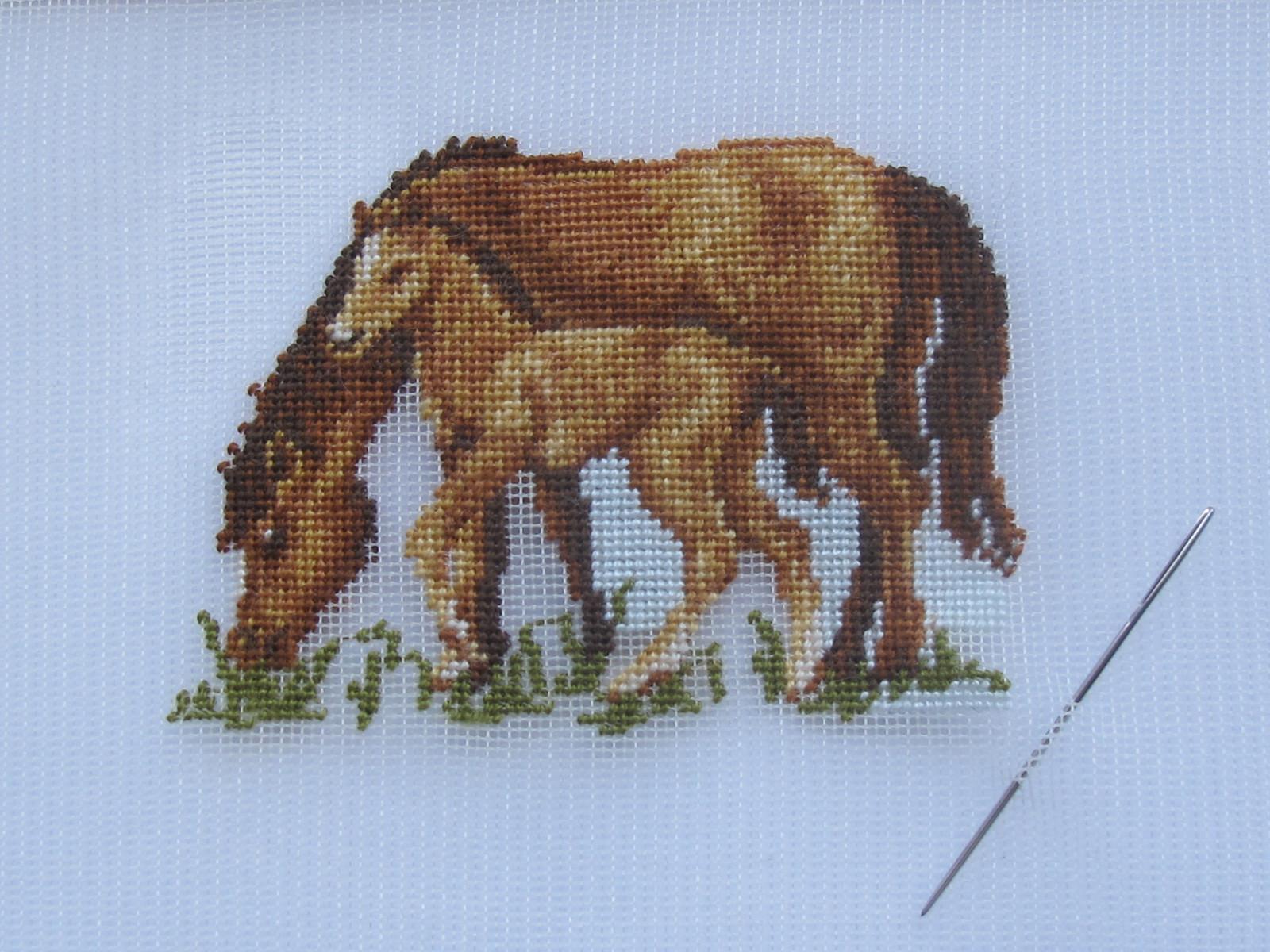 hest-foel.jpg