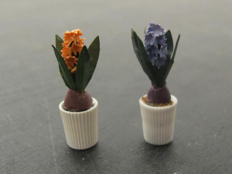 hyacinter-web.jpg